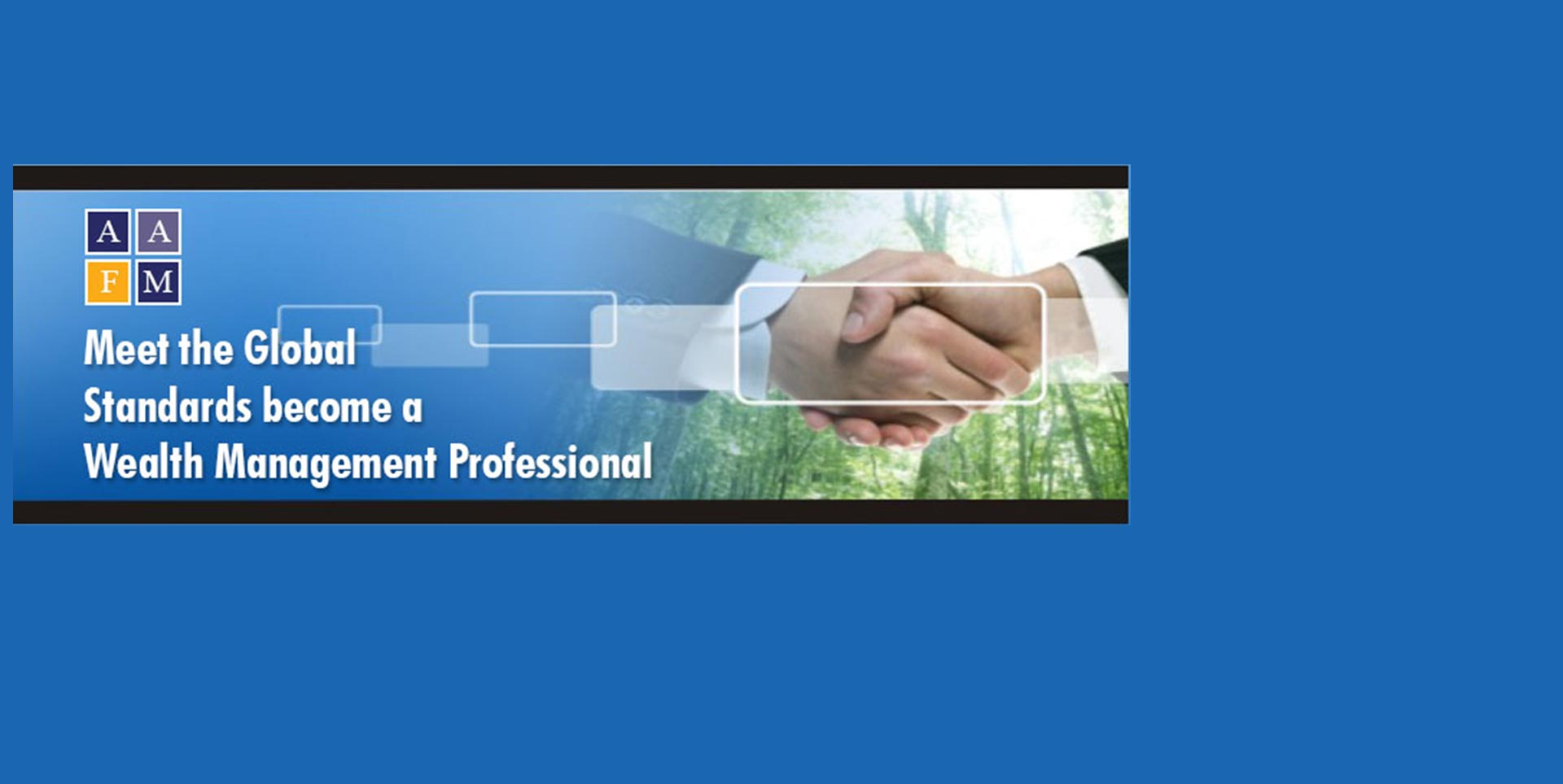 Wealth Management Professional